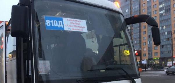 Власти Ленобласти решили бороться с выборгскими транспортными монополистами